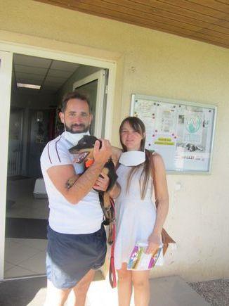 Adoption Asuma