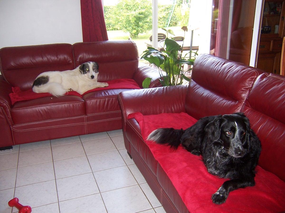 fifty spa de basse normandie. Black Bedroom Furniture Sets. Home Design Ideas