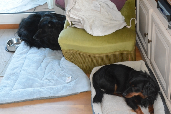 luck mezzo spa de basse normandie. Black Bedroom Furniture Sets. Home Design Ideas